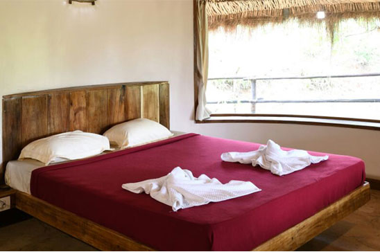 Best Weekend Deals - Shatavari Agri Stay Kankumbi Chorla